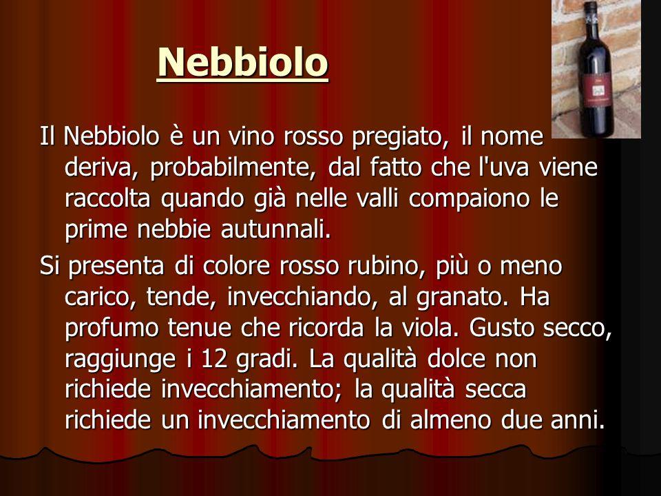 Nebbiolo Il Nebbiolo è un vino rosso pregiato, il nome deriva, probabilmente, dal fatto che l uva viene raccolta quando già nelle valli compaiono le prime nebbie autunnali.