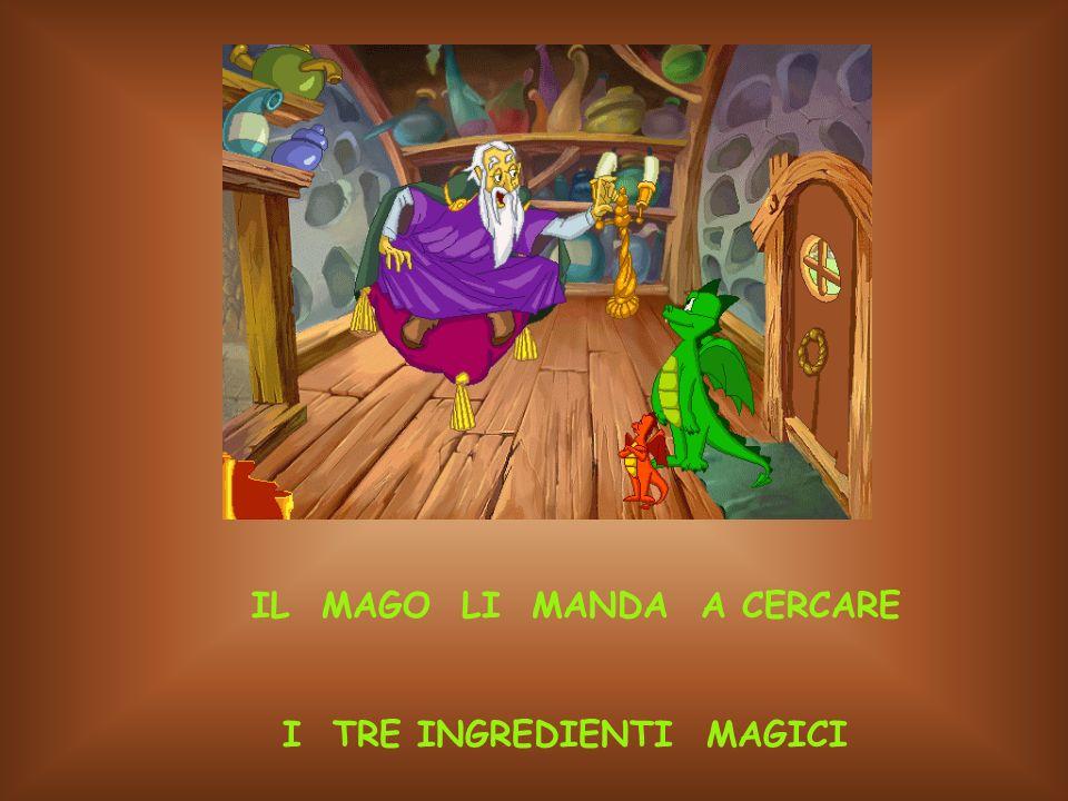 IL MAGO LI MANDA A CERCARE I TRE INGREDIENTI MAGICI