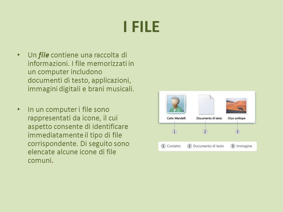 I FILE Un file contiene una raccolta di informazioni. I file memorizzati in un computer includono documenti di testo, applicazioni, immagini digitali