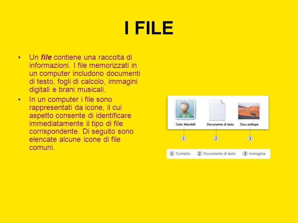 I FILE Un file contiene una raccolta di informazioni. I file memorizzati in un computer includono documenti di testo, fogli di calcolo, immagini digit