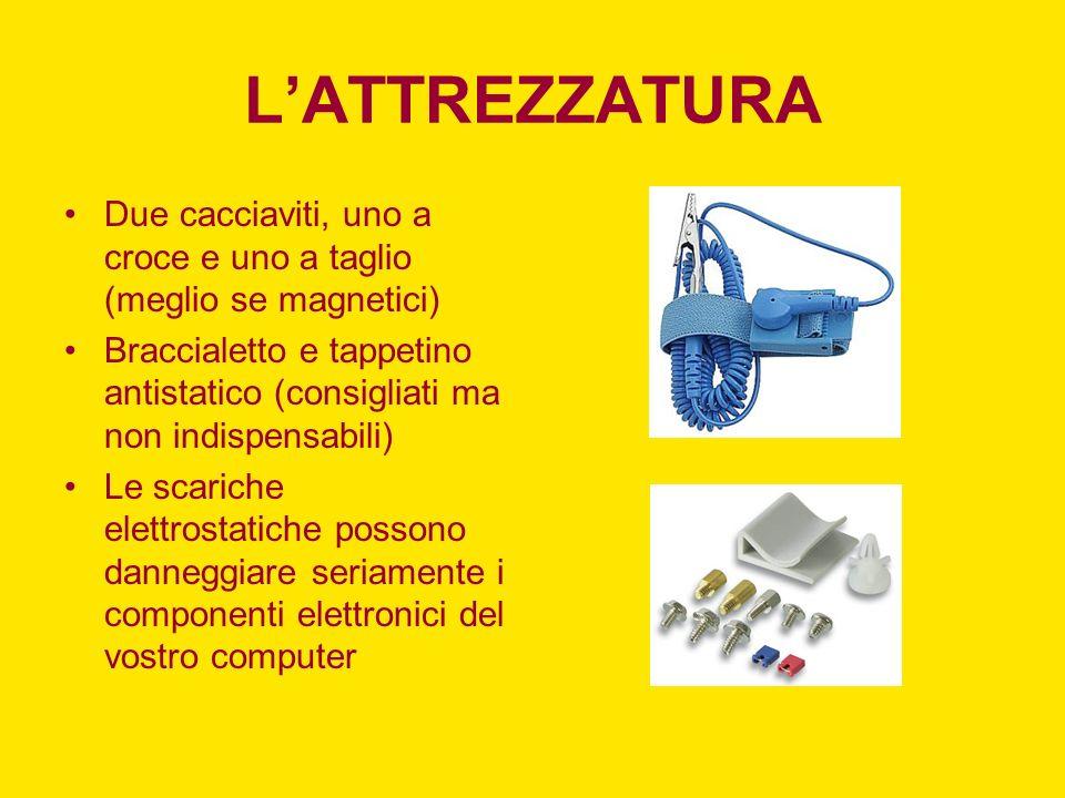 LA SCHEDA VIDEO ROSSO –PCI-E 16x BLU –PCI-E 1x ARANCIO –AGP BIANCO –PCI