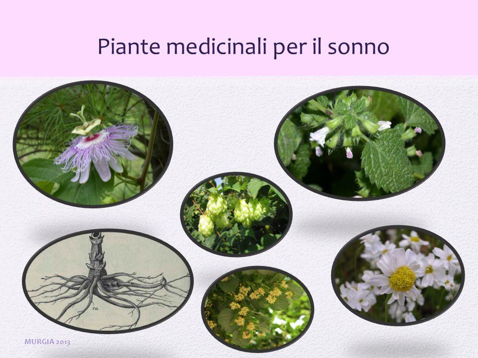 Piante medicinali per il sonno MURGIA 2013