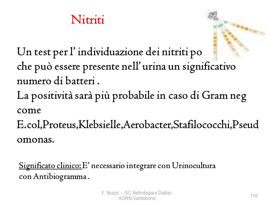 F. Nuzzi - SC Nefrologia e Dialisi- AORN Santobono 116 Nitriti Un test per l individuazione dei nitriti positivo indica che può essere presente nell u