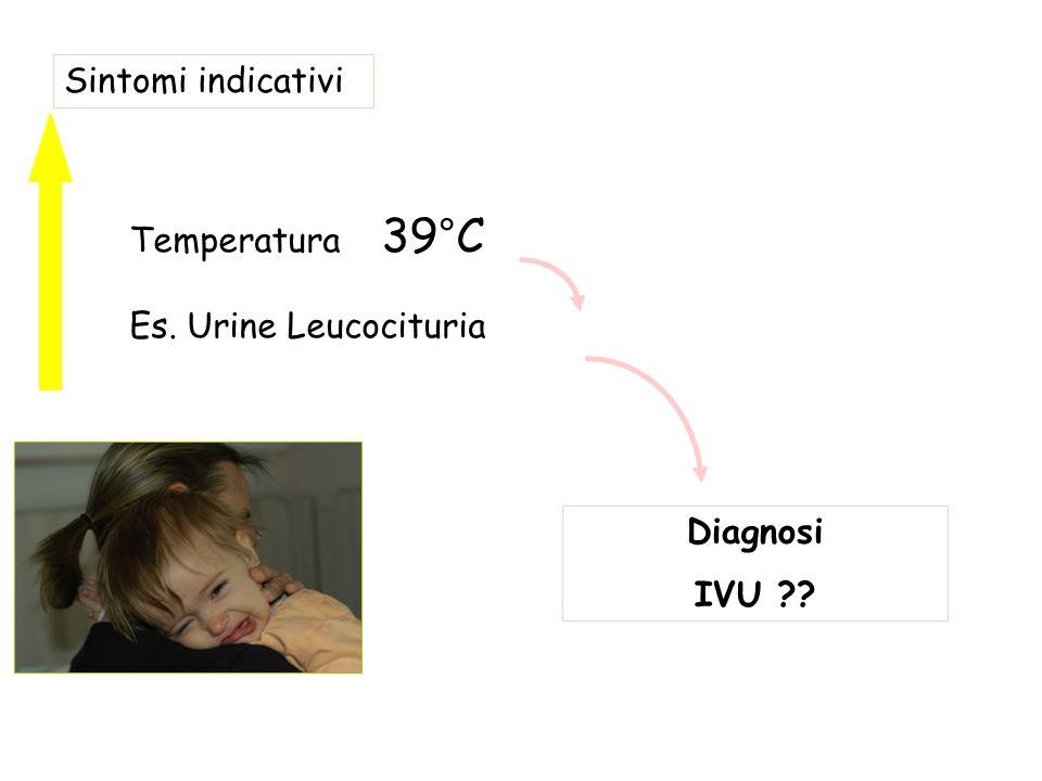 Diagnosi IVU ?? Sintomi indicativi Temperatura 39°C Es. Urine Leucocituria
