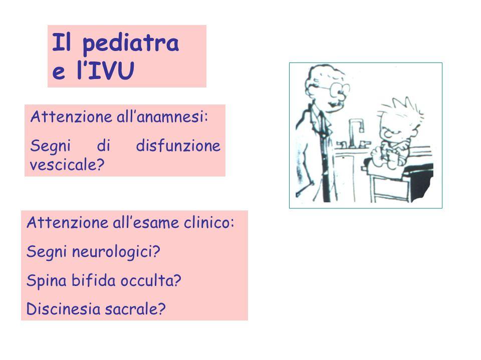 Il pediatra e lIVU Attenzione allanamnesi: Segni di disfunzione vescicale? Attenzione allesame clinico: Segni neurologici? Spina bifida occulta? Disci