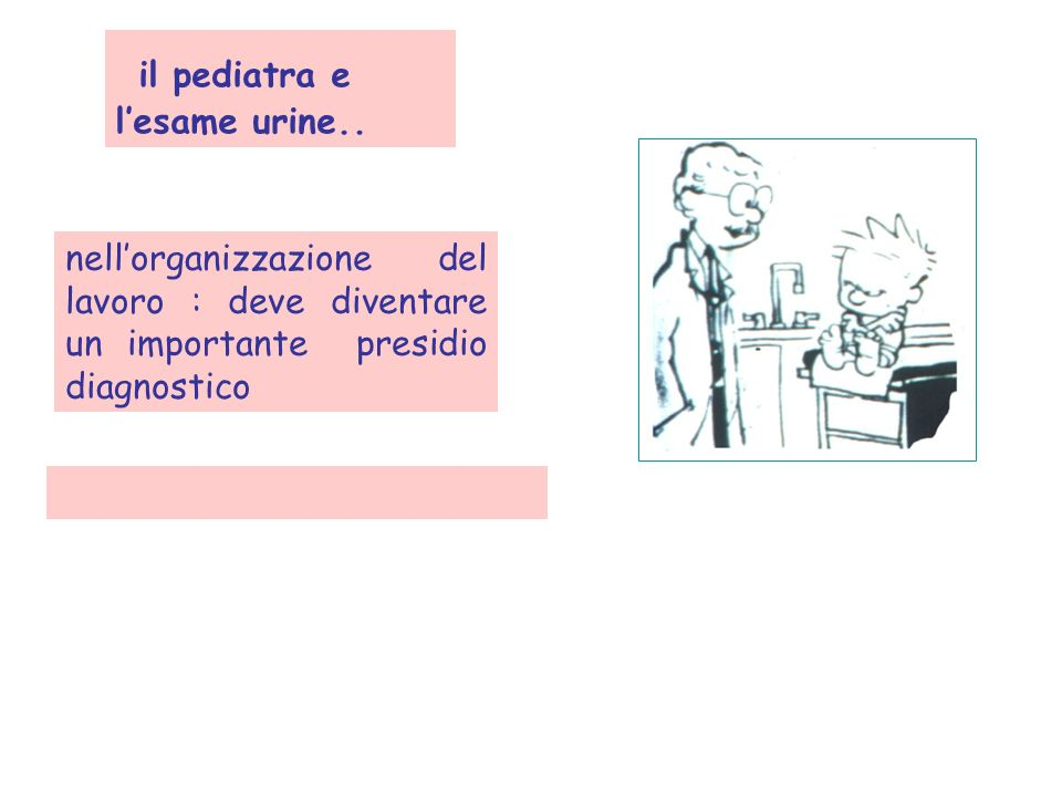 il pediatra e lesame urine.. nellorganizzazione del lavoro : deve diventare un importante presidio diagnostico