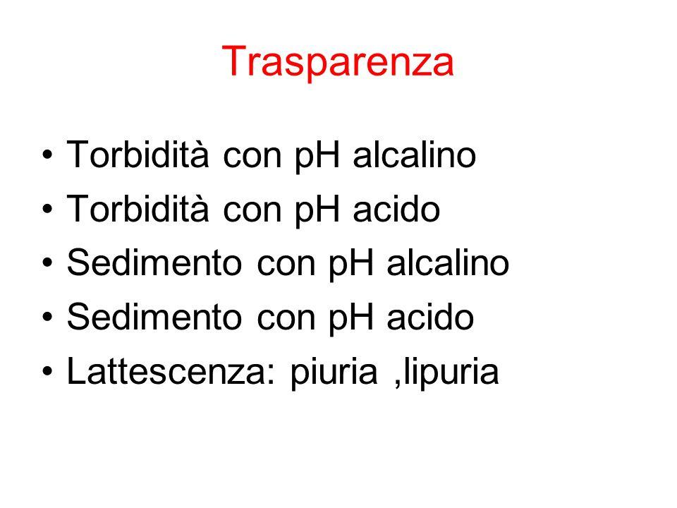 Trasparenza Torbidità con pH alcalino Torbidità con pH acido Sedimento con pH alcalino Sedimento con pH acido Lattescenza: piuria,lipuria
