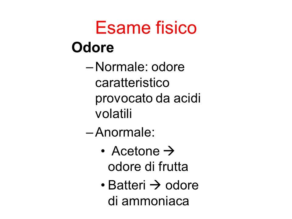 Esame fisico Odore –Normale: odore caratteristico provocato da acidi volatili –Anormale: Acetone odore di frutta Batteri odore di ammoniaca