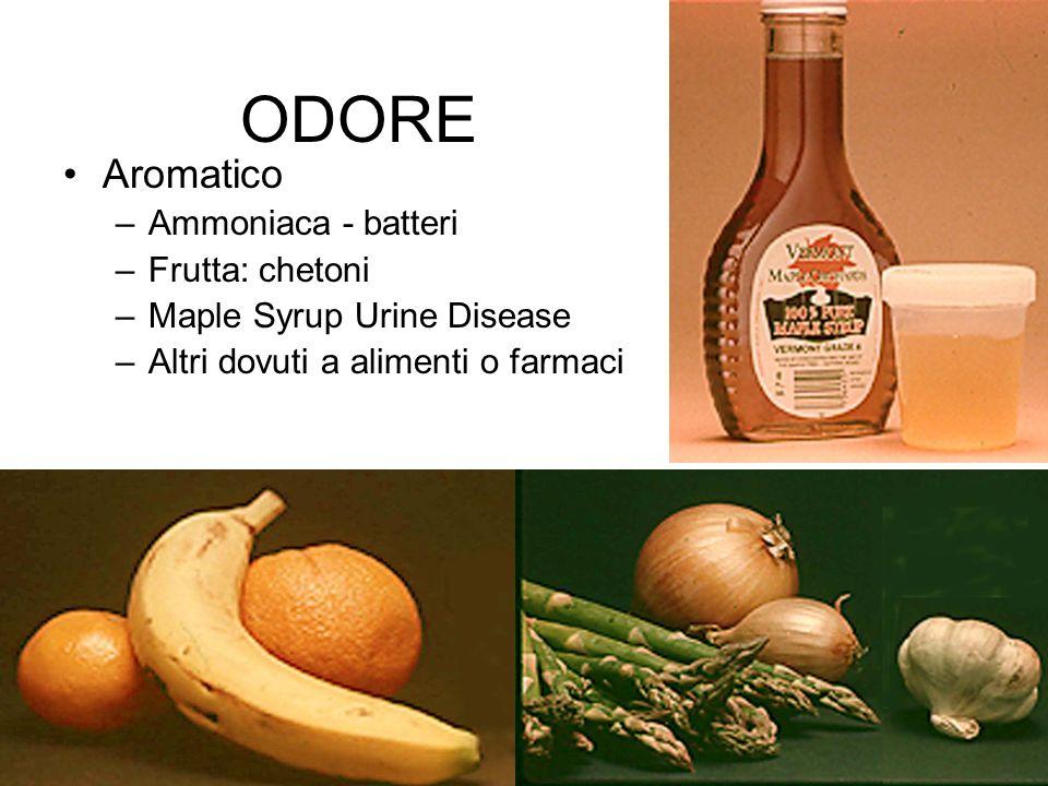 ODORE Aromatico –Ammoniaca - batteri –Frutta: chetoni –Maple Syrup Urine Disease –Altri dovuti a alimenti o farmaci