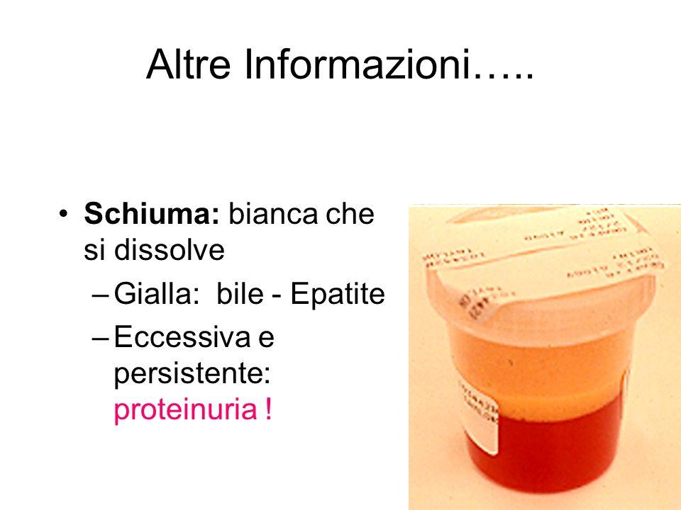 Altre Informazioni….. Schiuma: bianca che si dissolve –Gialla: bile - Epatite –Eccessiva e persistente: proteinuria !