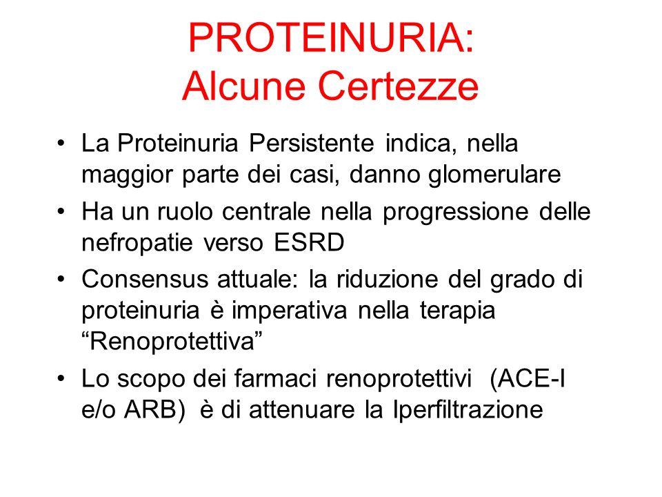 PROTEINURIA: Alcune Certezze La Proteinuria Persistente indica, nella maggior parte dei casi, danno glomerulare Ha un ruolo centrale nella progression