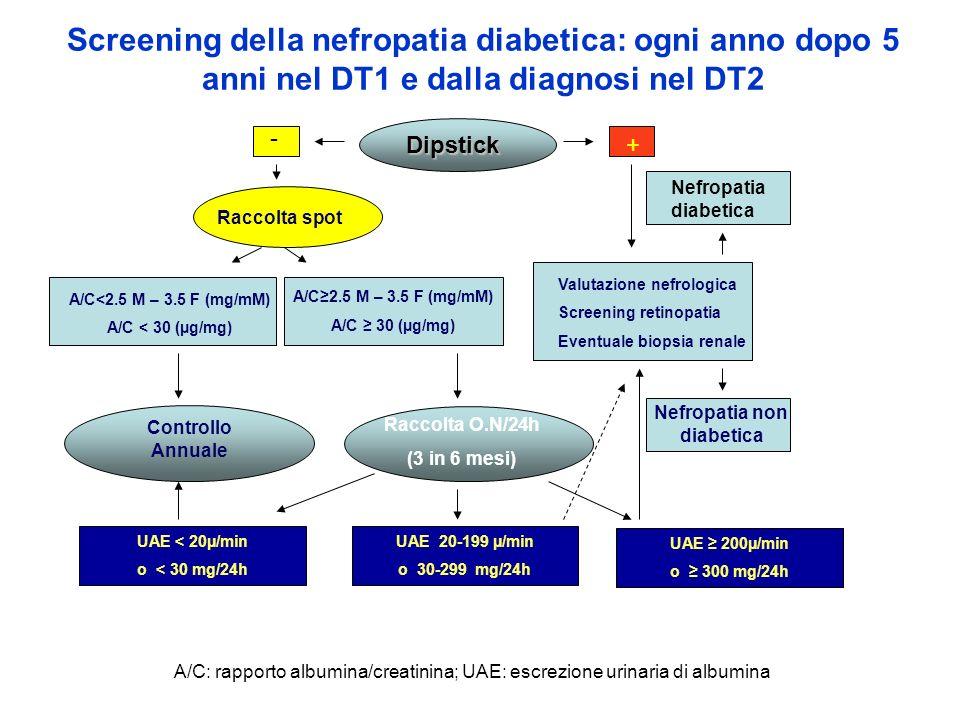 Screening della nefropatia diabetica: ogni anno dopo 5 anni nel DT1 e dalla diagnosi nel DT2 Dipstick - + Raccolta spot A/C2.5 M – 3.5 F (mg/mM) A/C 3