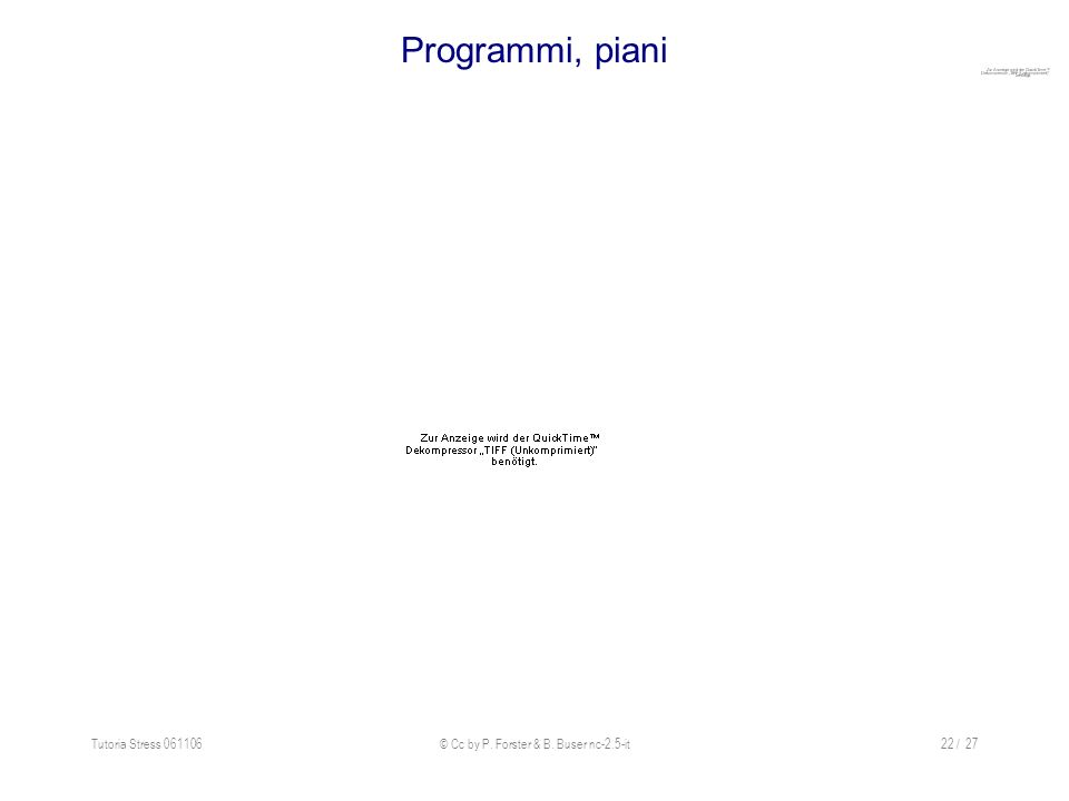 Tutoria Stress 061106© Cc by P. Forster & B. Buser nc-2.5-it22 / 27 Programmi, piani