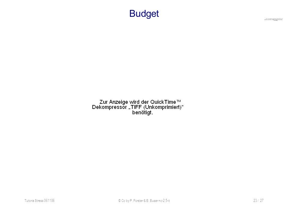 Tutoria Stress 061106© Cc by P. Forster & B. Buser nc-2.5-it23 / 27 Budget