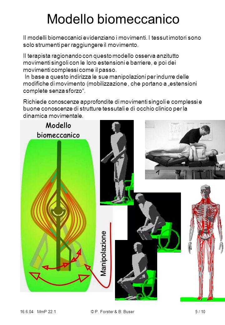 16.6.04 MmP 22.1© P. Forster & B. Buser5 / 10 Modello biomeccanico Il modelli biomeccanici evidenziano i movimenti. I tessut imotori sono solo strumen