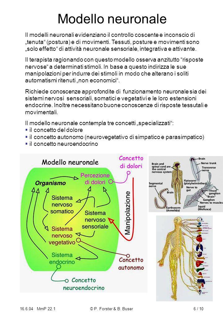 16.6.04 MmP 22.1© P. Forster & B. Buser6 / 10 Modello neuronale Il modelli neuronali evidenziano il controllo coscente e inconscio di tenuta (postura)