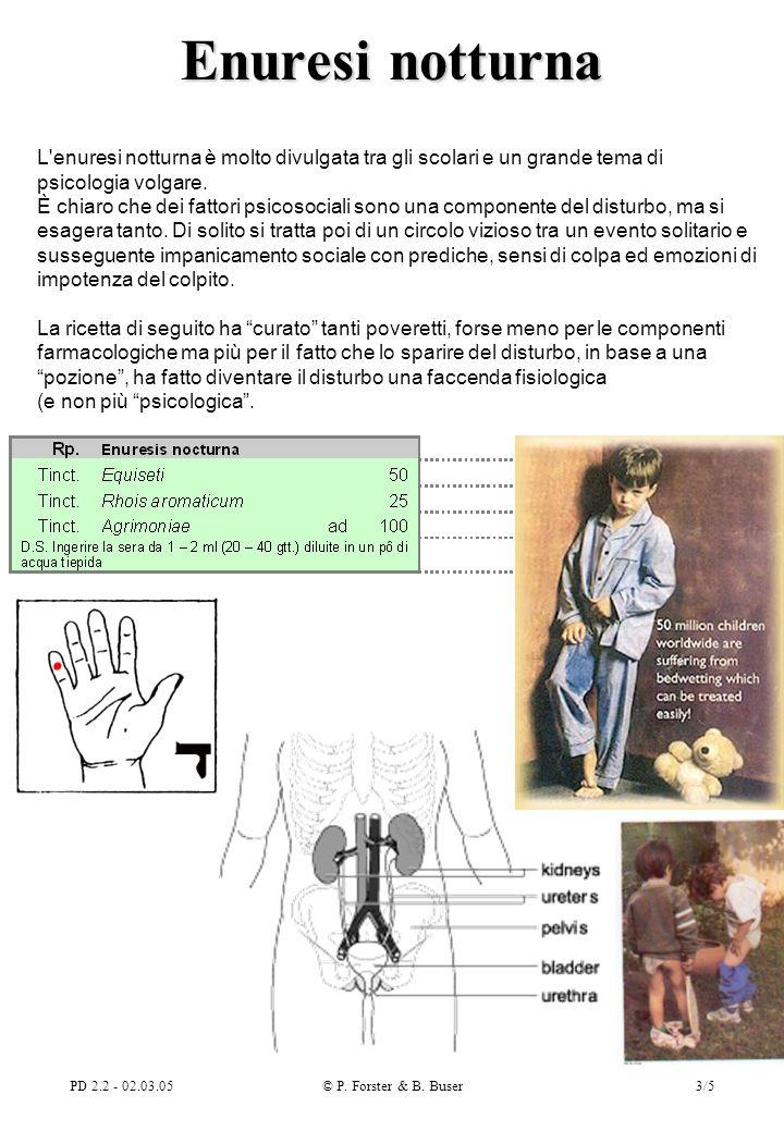 PD 2.2 - 02.03.05© P. Forster & B. Buser4/5 Piccole ferite e contusioni