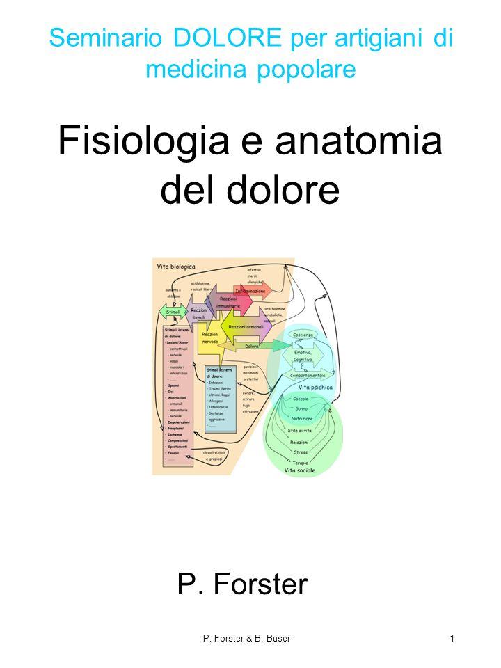 P. Forster & B. Buser1 Seminario DOLORE per artigiani di medicina popolare Fisiologia e anatomia del dolore P. Forster