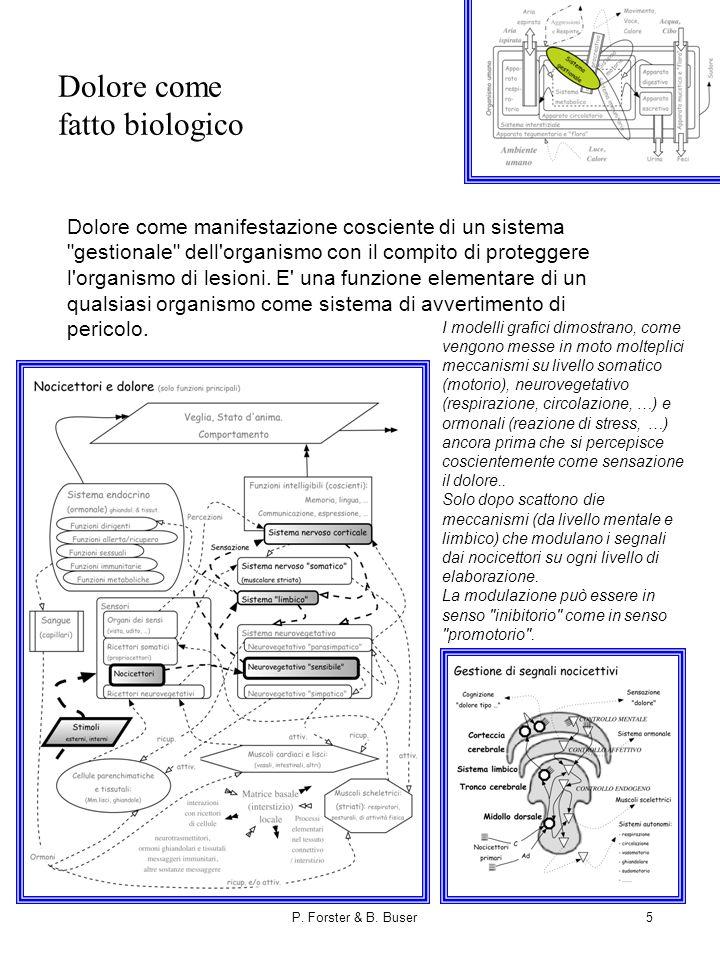 P. Forster & B. Buser5 Dolore come fatto biologico Dolore come manifestazione cosciente di un sistema