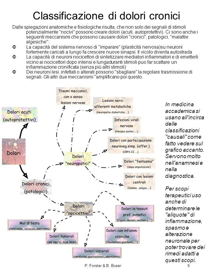 P. Forster & B. Buser9 Classificazione di dolori cronici Dalle spiegazioni anatomiche e fisiologiche risulta, che non solo dei segnali di stimoli pote
