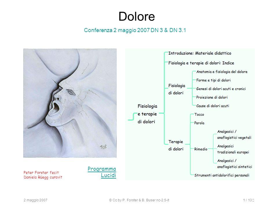 2 maggio 2007© Cc by P. Forster & B. Buser nc-2.5-it1 / 13 Dolore Conferenza 2 maggio 2007 DN 3 & DN 3.1 Programma Lucidi Peter Forster fecit Daniela