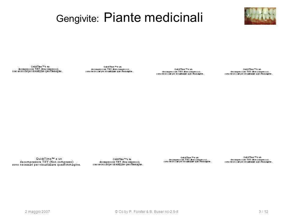 2 maggio 2007© Cc by P. Forster & B. Buser nc-2.5-it3 / 12 Gengivite: Piante medicinali