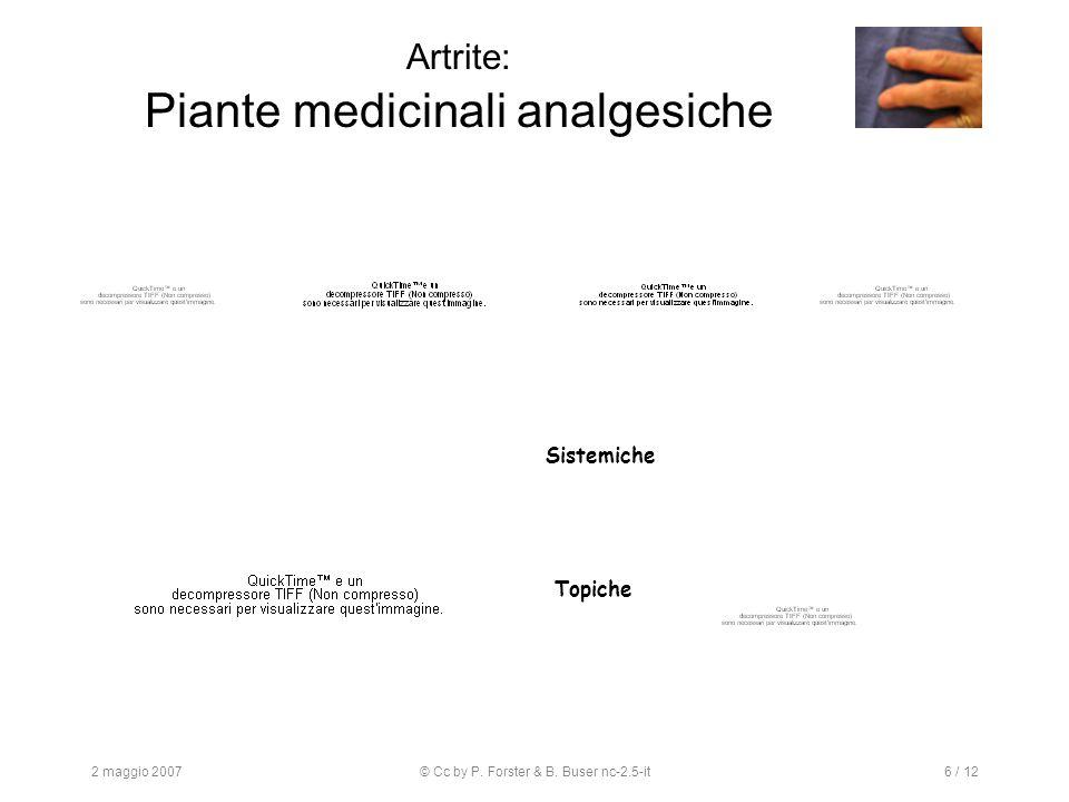 2 maggio 2007© Cc by P. Forster & B. Buser nc-2.5-it6 / 12 Artrite: Piante medicinali analgesiche Sistemiche Topiche