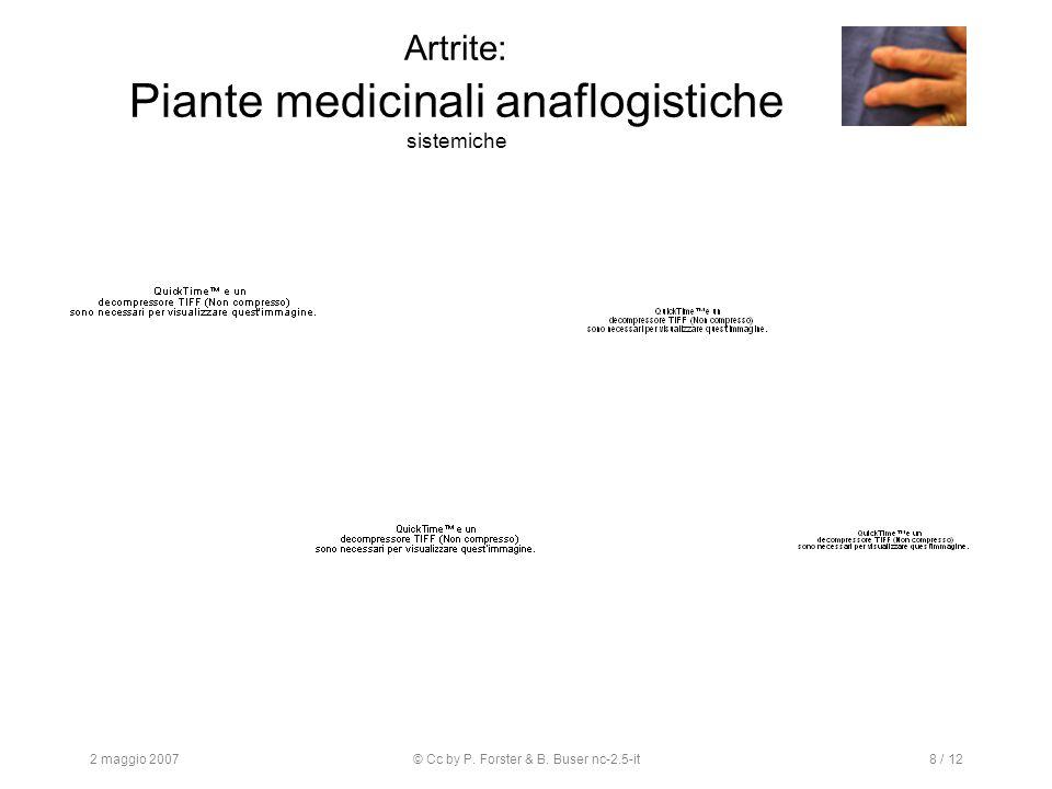 2 maggio 2007© Cc by P. Forster & B. Buser nc-2.5-it8 / 12 Artrite: Piante medicinali anaflogistiche sistemiche
