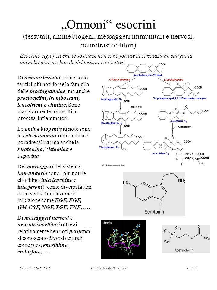 17.3.04 MmP 18.1P. Forster & B. Buser11 / 11 Ormoni esocrini (tessutali, amine biogeni, messaggeri immunitari e nervosi, neurotrasmettitori) Di ormoni