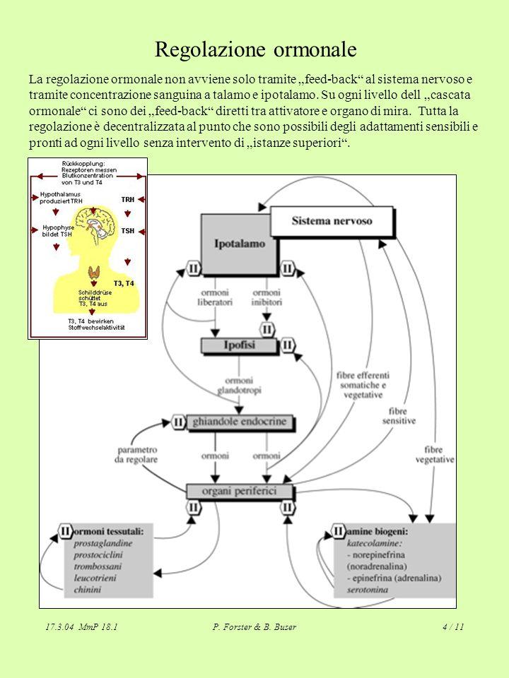 17.3.04 MmP 18.1P. Forster & B. Buser4 / 11 Regolazione ormonale La regolazione ormonale non avviene solo tramite feed-back al sistema nervoso e trami