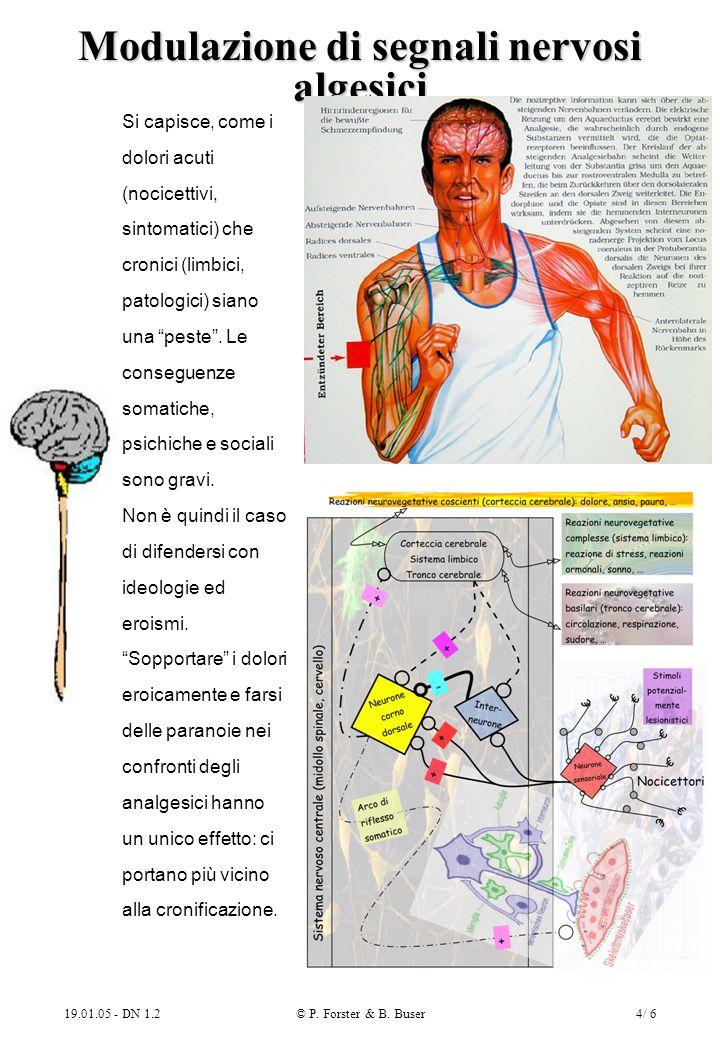 19.01.05 - DN 1.2© P. Forster & B. Buser4/ 6 Modulazione di segnali nervosi algesici Si capisce, come i dolori acuti (nocicettivi, sintomatici) che cr