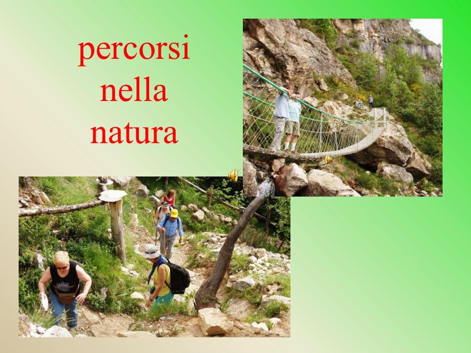 percorsi nella natura