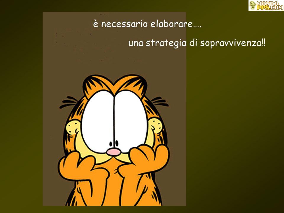 è necessario elaborare…. una strategia di sopravvivenza!!