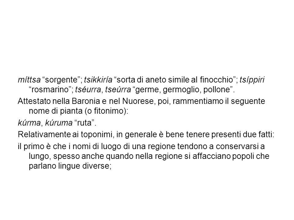 il secondo fatto da considerare è che i toponimi, nel momento in cui vengono assegnati, hanno un significato (tipo Villanova, Civitavecchia, Castagneto, Montenero etc.).