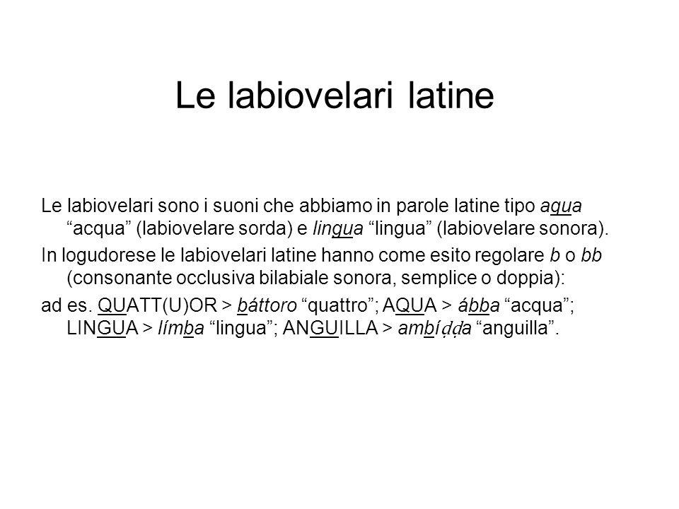Trattamento di LL latina Caratteristico del sardo è lo sviluppo di LL del latino, che produce una consonante retroflessa doppia : VILLA > bí a villaggio, paese; PULLA > pú a gallina; CABALLU > nuor.