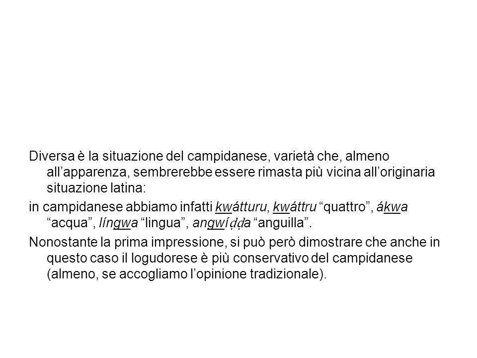 Le labiovelari latine Le labiovelari sono i suoni che abbiamo in parole latine tipo aqua acqua (labiovelare sorda) e lingua lingua (labiovelare sonora).