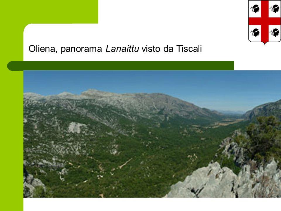 Oliena, panorama Lanaittu visto da Tiscali