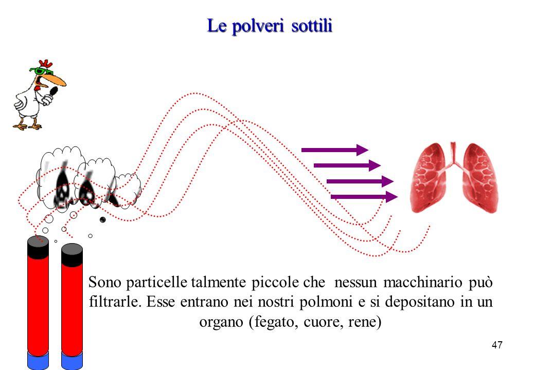 47 Sono particelle talmente piccole che nessun macchinario può filtrarle. Esse entrano nei nostri polmoni e si depositano in un organo (fegato, cuore,