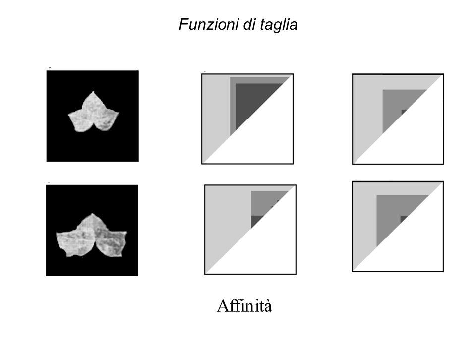 Funzioni di taglia Affinità