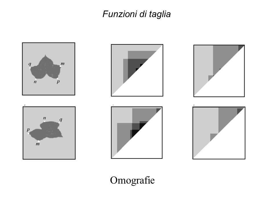 Funzioni di taglia Omografie
