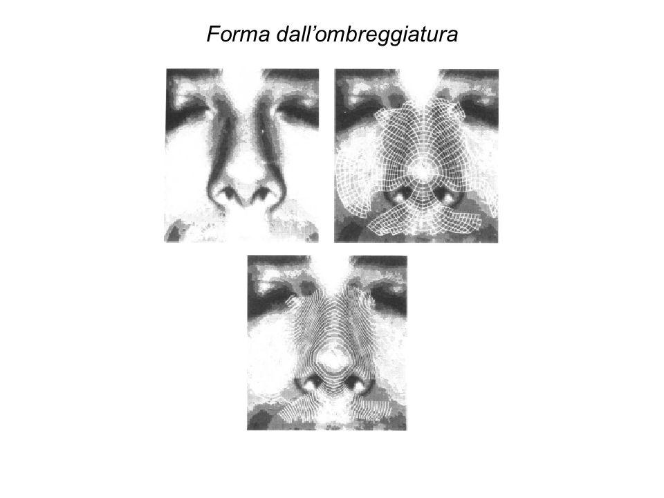 Uninteressante variante della luce strutturata è luso di frange marezzate (moiré fringes), figure di interferenza (o di battimento) che si ottengono proiettando una griglia molto fine sulla superficie della scena, e interponendo unanaloga griglia davanti allobiettivo.