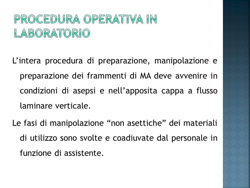Lintera procedura di preparazione, manipolazione e preparazione dei frammenti di MA deve avvenire in condizioni di asepsi e nellapposita cappa a fluss