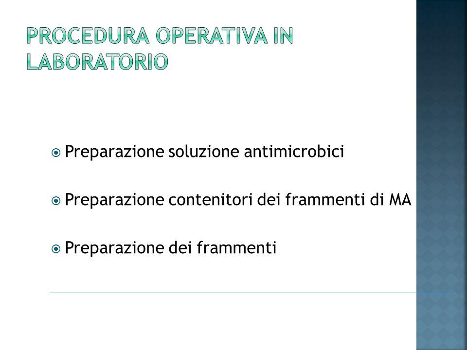 Preparazione soluzione antimicrobici Preparazione contenitori dei frammenti di MA Preparazione dei frammenti