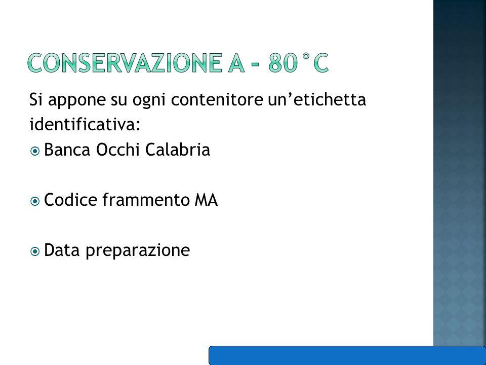 Si appone su ogni contenitore unetichetta identificativa: Banca Occhi Calabria Codice frammento MA Data preparazione