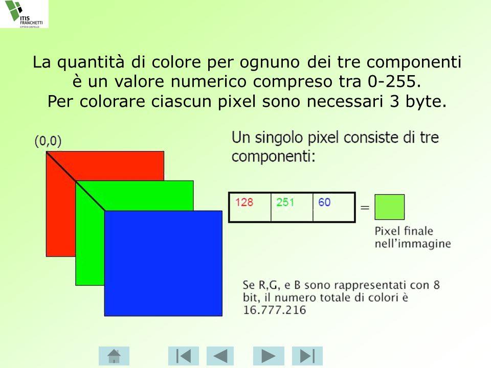 La quantità di colore per ognuno dei tre componenti è un valore numerico compreso tra 0-255. Per colorare ciascun pixel sono necessari 3 byte.