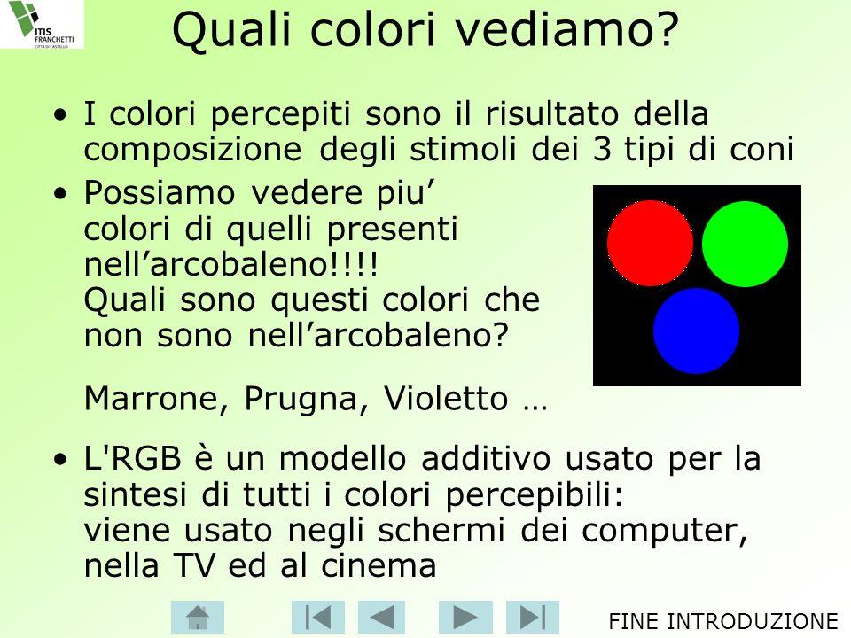 Quali colori vediamo? I colori percepiti sono il risultato della composizione degli stimoli dei 3 tipi di coni Possiamo vedere piu colori di quelli pr