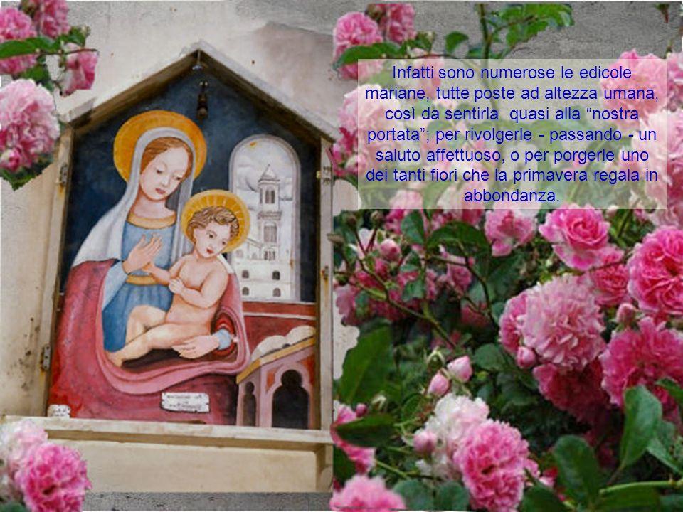 Maggio è il mese dedicato alla Madonna, la Santa più vicina a Dio e nello stesso tempo la Donna con esperienze così simili alle nostre, nel suo umano