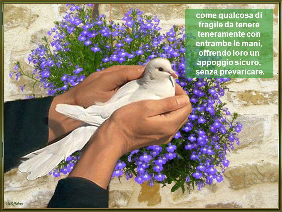 Creature più piccole di noi bisognose anche loro di protezione, affetto e calorosa vicinanza umana e perciò da trattare con grande rispetto e delicatezza