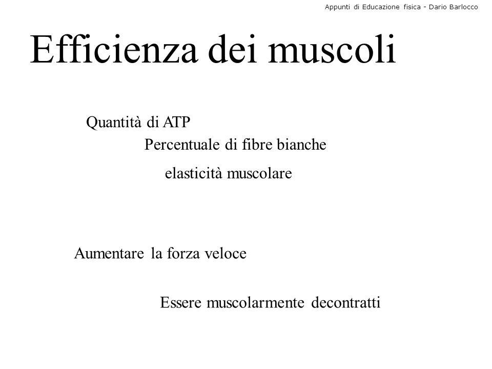 Appunti di Educazione fisica - Dario Barlocco Efficienza dei muscoli Quantità di ATP Percentuale di fibre bianche elasticità muscolare Aumentare la fo