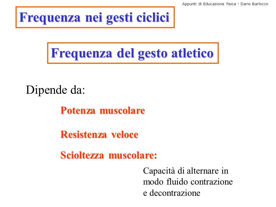 Appunti di Educazione fisica - Dario Barlocco Frequenza nei gesti ciclici Frequenza del gesto atletico Dipende da: Potenza muscolare Resistenza veloce